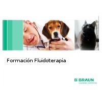 Fluidoterapia Basica